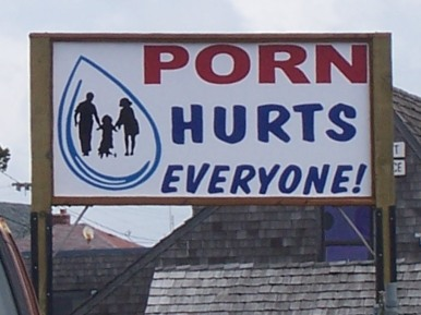 Damn the porn!