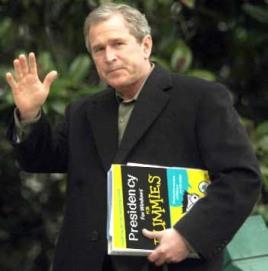president-for-dummies